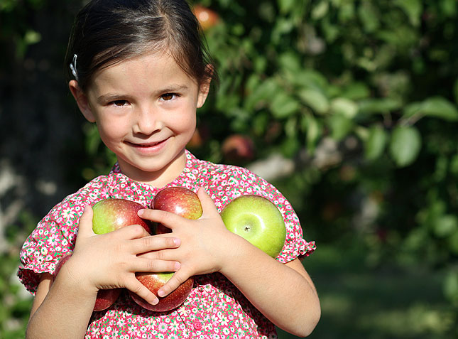 local harvest challenge girl with apples